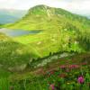 A spasso con gusto _ escursione enogastronomica nel cuore del Lagorai!